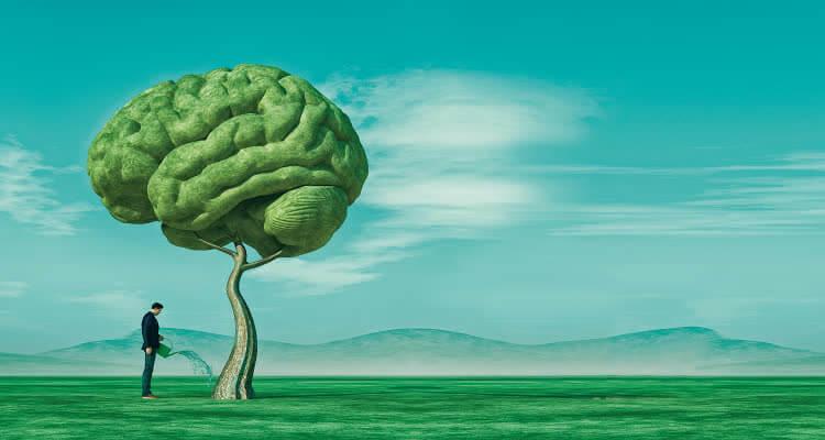 Тренировка способностей мозга с помощью игр и упражнений
