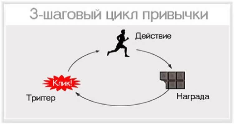 Три цикла привычек