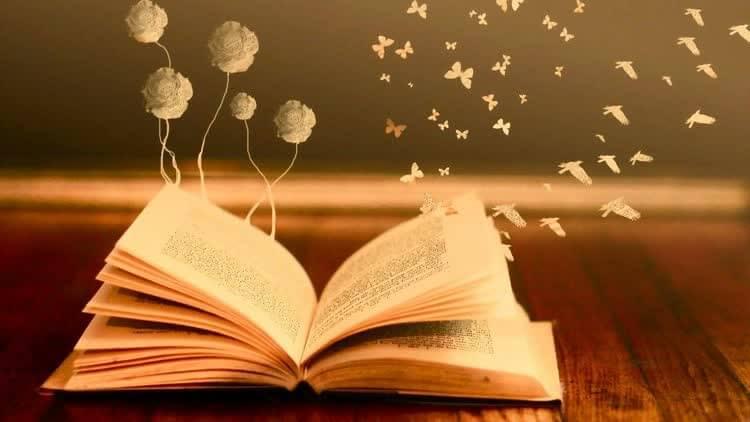 книга с вылетающими птицами бабочками и цветами