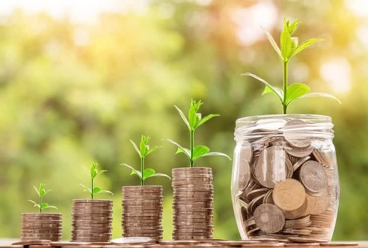 Из денег растет зеленый росток